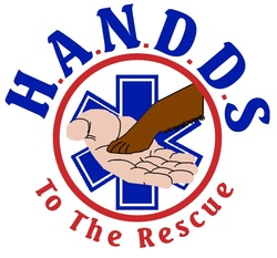 H.A.N.D.D.S. to the Rescue