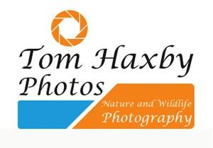 Tom Haxby Photos