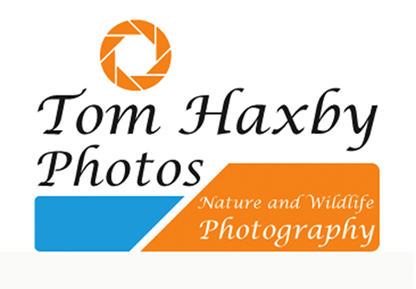 Tom Haxby Photos