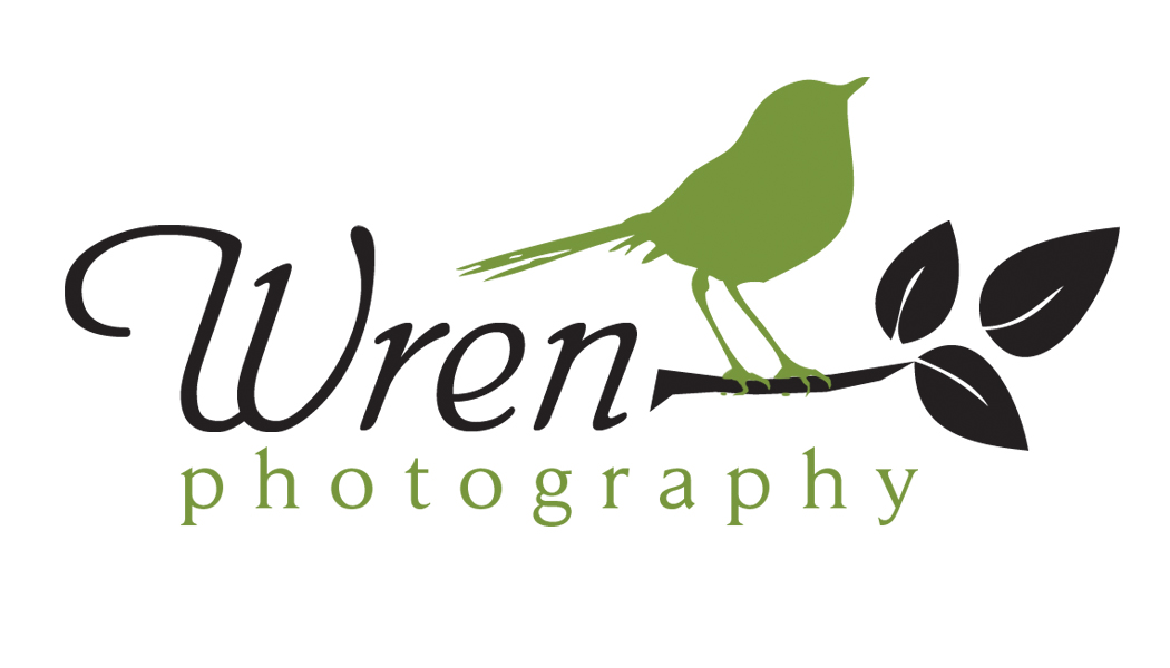 Wren Photography